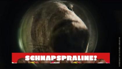Die Känguru-Chroniken Trailer Deutsch Kinofilm